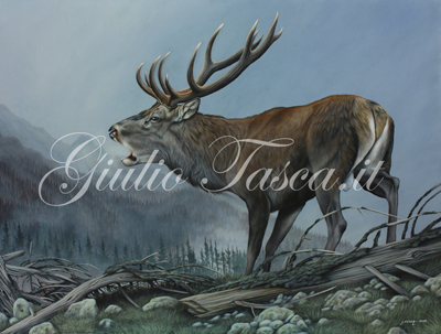 Voci d'autunno 81x61 - Jahr 2014 - Private collection
